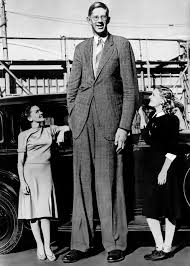 How tall is Robert Wadlow?